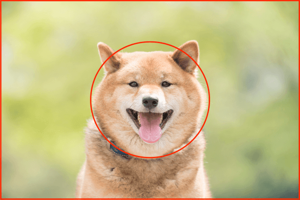 日の丸構図の例